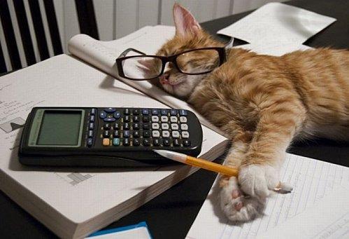 Estudar gif